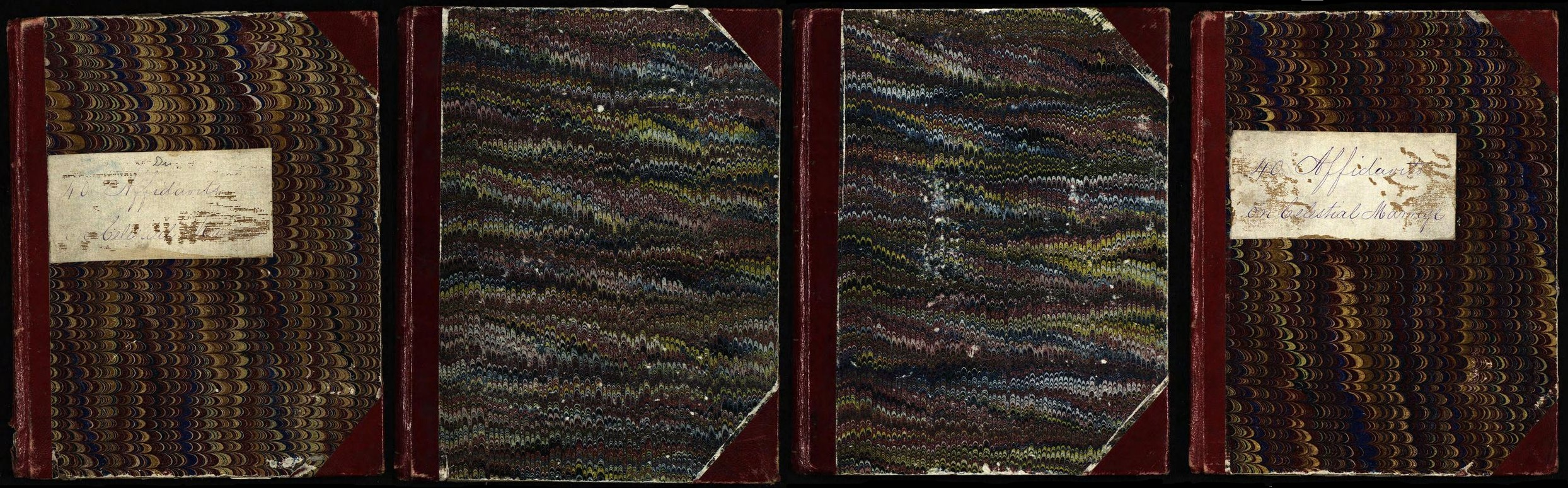 Brian Hales Polygamy Sylvia Lyon & The 1869 Utah Affidavits